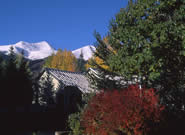 breckenridge summer photos