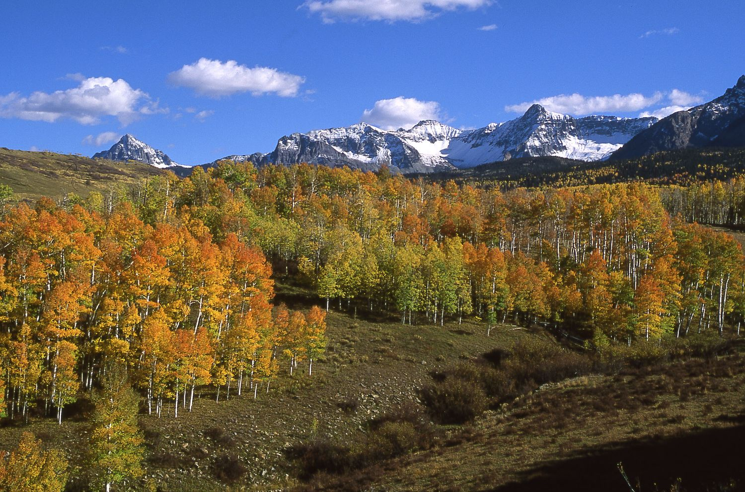 summit county Choose from 1002 summit county hotels with huge savings summit county is known for its mountain views, lakeside setting and beer don't miss out on great hotels near keystone ski resort and copper mountain ski resort.